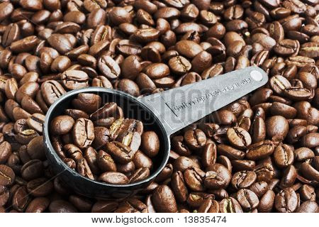 Coffee Beans in Measurement Spoon