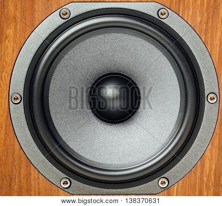 audio loudspeaker in wooden cabinet