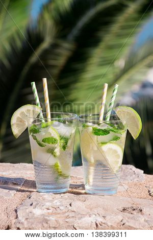 Two glasses with soda water lemon slices mint leaves and ice cubes on the background of palm branches. Summer drink soda water cocktail. Vertical. Daylight. Close.