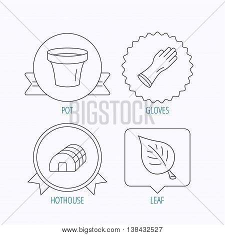 Leaf, scissors and pot icons. Hothouse linear sign. Award medal, star label and speech bubble designs. Vector
