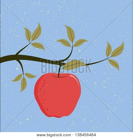 A red apple on a branch of a tree