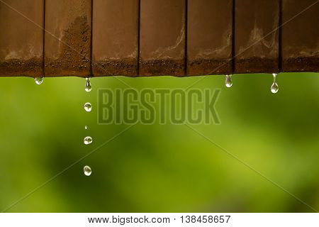 Rain water droplets coming down from rusted metal roof selective focus with shallow depth of field blur garden green background