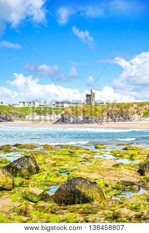 seaweed covered rocks with castle and cliffs on ballybunion beach in county kerry ireland