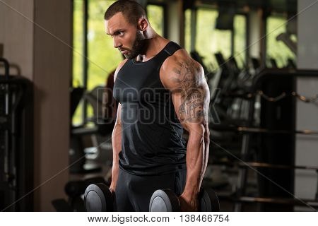 Muscled Male Model Exercising Biceps With Dumbbells
