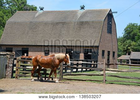 CHARLESTON SC USA JUNE 23 2016: Stable at Middleton Place is a plantation in Dorchester County, directly across the Ashley River from North Charleston, in the U.S. state of South Carolina.