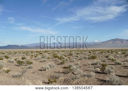 The panorama of a barren Mojave desert landscape with dry plants and grass tufts.