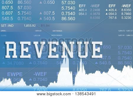 Revenue Budget Currency Econnomy Finance Concept