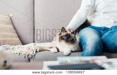 Woman relaxing on the sofa at home and cuddling her beautiful long hair cat poster