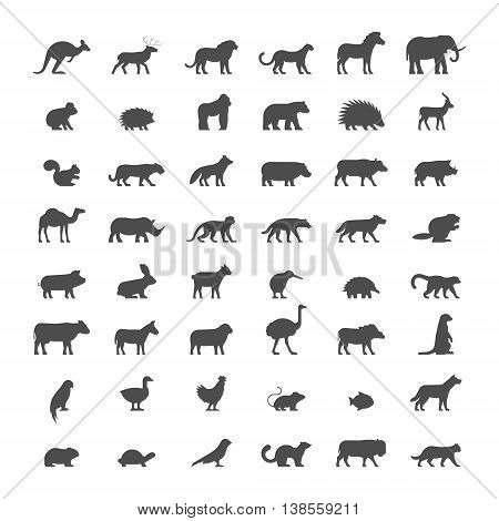 Black silhouettes of australian african american and other animals. Vector icon ferret panther warthog mouse hedgehog cat dog and others. Open path.