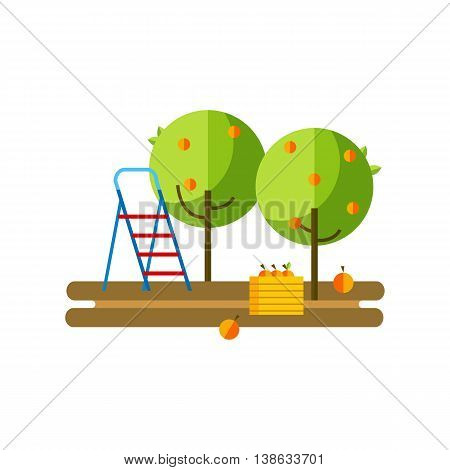 Flat vector illustration apple orchard and harvest fruit. Apple orchard flat icon.