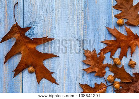 Gifts Autumn Wooden Background Vintage Composition