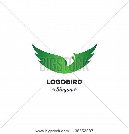Fun, beauty, isolated, cartoon, geek eagle flies spread wings, oval vector shape, minimal, flat, round stylized logotype, green color logo template, birdeaglehawkvulture featherswings element logo