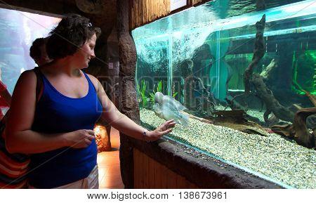 Sochi, Russia - June 27, 2014, A woman stands near a tank in the aquarium