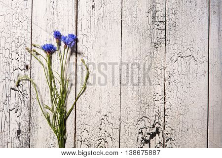 Blue flowers, summer wildflowers bouquet on white wooden background, copy space. Cornflowers, flowers on wood, summer flowers on wooden background, floral frame.