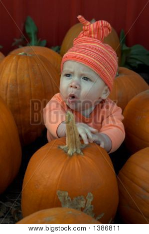 Playing With Pumpkins