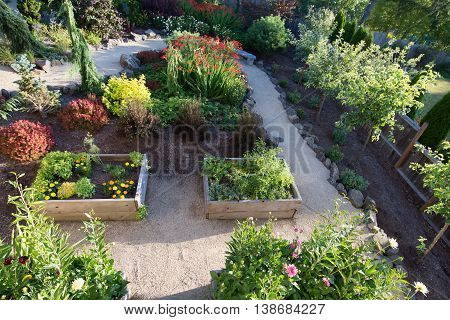 Looking down on a path curving between flowers in a perennial garden