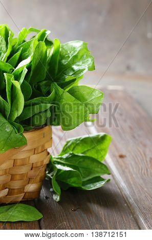 natural organic green spinach on a wooden table