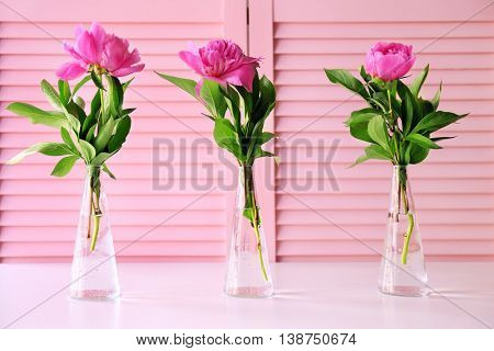 Beautiful peony flowers on pink folding screen background