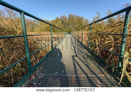 Modern green and metal Footbridge in nature