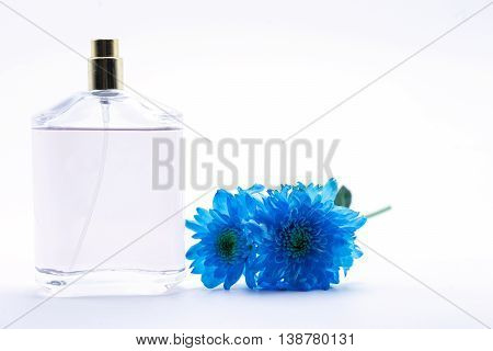 blue daisy flower navy blue daisy flower and perfume on white isolate background text word on background daisy flower beautiful daisy lovely daisy pretty daisy fresh daisy