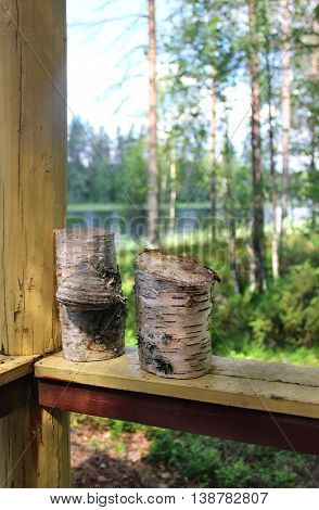 Beautiful nature and forests of Finland in the summer