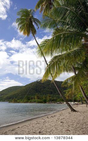 Purple Turtle Beach, Dominica