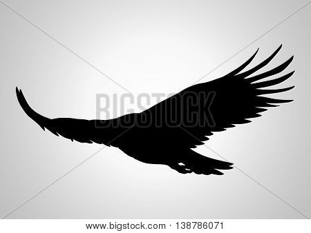 Simple silhouette illustration of a soaring eagle
