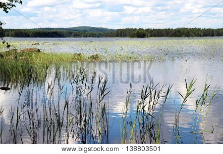 Beautiful nature, lakes and forests of Finland