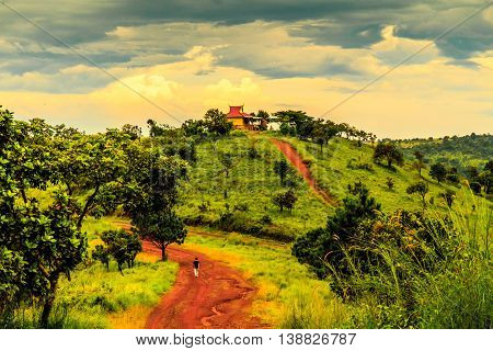 A red dirt road over rolling green hills leads to a temple under an orange sky after sunset in the Cambodian countryside