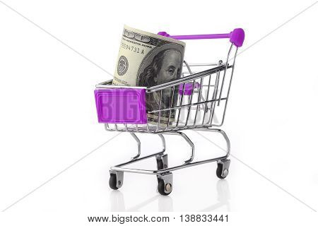 Mini size shopping cart with US Dolar inside on white background