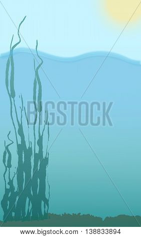 under alga water bottom surface and yellow sun vector drawing card