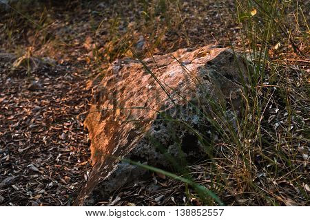 Stone on a mountain treking path at sunset in Sithonia, Greece