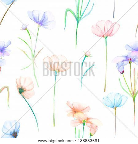 A seamless floral pattern with watercolor hand drawn tender pink and purple cosmos flowers, painted on a white background