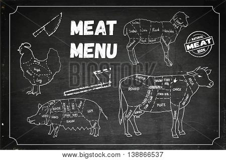 Meat menu. Set of meat symbols, beef, pork, chicken, lamb. Hand drawn vector stock illustration. Chalk board drawing.