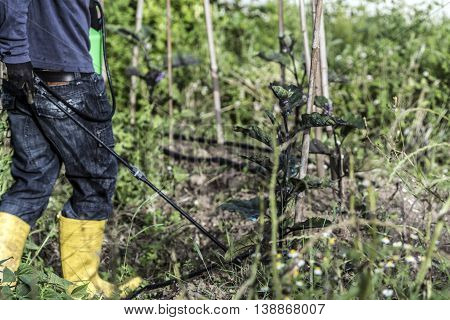 Preparing Spray Image & Photo (Free Trial) | Bigstock