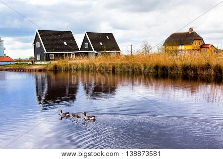 Landscape with houses on coast of a pond