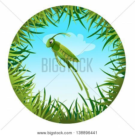 Insect and summer nature icon. grasshopper on the background of the sky in a clearing in a circle around grass