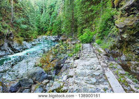 Valley With Mountain River And Hiking Trail. Robe Canyon Historic Park - Lime Kiln Trail