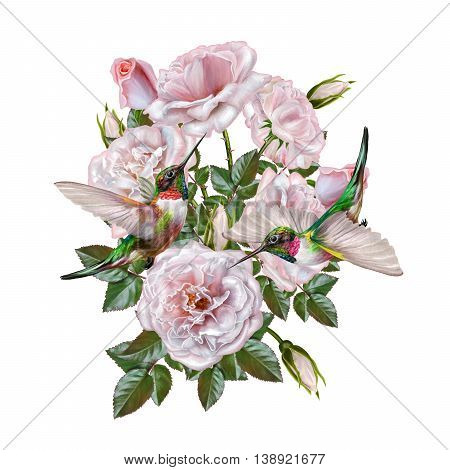Flower composition. Bouquet of pink roses of pink roses. Old style. Isolated. Vintage postcard. Two small bright birds hummingbirds.