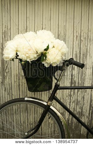 flowers in the basket of an old Bicycle on wooden background