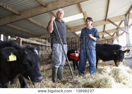 Farmer Having Discussion With Vet