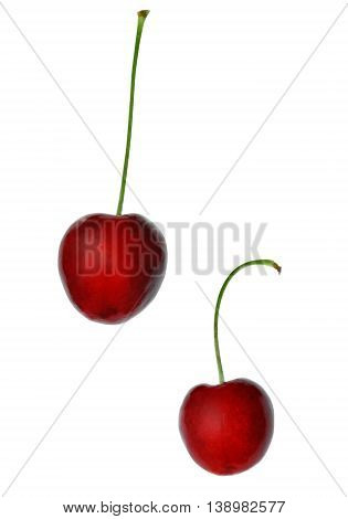 Two berries of sweet cherry on a white background