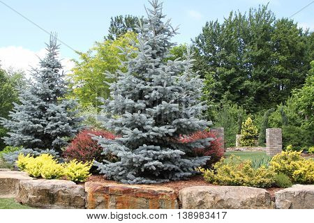 Landscaping of trees and shrubs lined with massive rocks