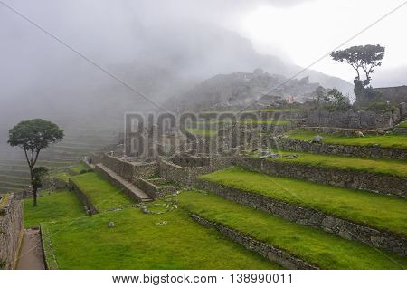 View Of Terraces Of Lost Inca City Of Machu Picchu. Low Clouds. Cusco Region,sacred Valley, Peru