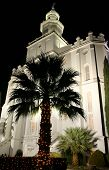 Palm tree and Christmas lights give St. George Utah LDS Temple a holiday atmosphere. poster