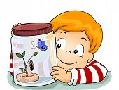 Illustration of a Little Boy Observing the Life Cycle of a Butterfly poster
