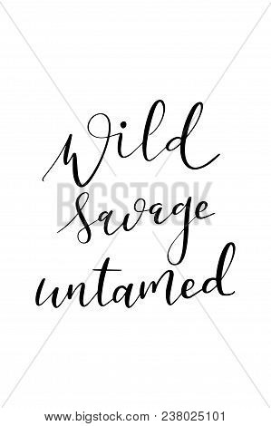 Hand Drawn Word. Brush Pen Lettering With Phrase Wild Savage Untamed.