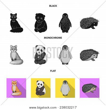 Fox, Panda, Hedgehog, Penguin And Other Animals.animals Set Collection Icons In Black, Flat, Monochr