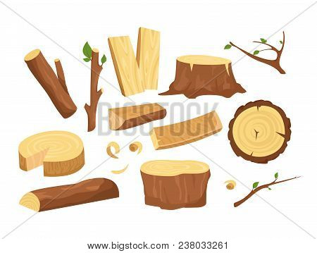 Vector Illustration Set Of Materials For Wood Industry. Collection Of Tree Logs, Planks, Stump, Twig