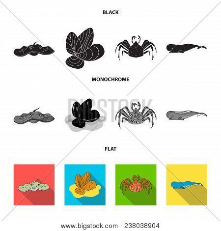 Electric Ramp, Mussels, Crab, Sperm Whale.sea Animals Set Collection Icons In Black, Flat, Monochrom